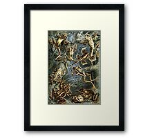 For the Love of Frogs Framed Print