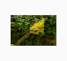 beaver pond,grasses, Gatineau park Unisex T-Shirt