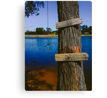 Rope swing hanging from tree above lake Canvas Print