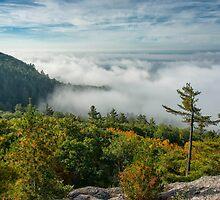 landscape, fog, mist, Escarpment by MichaelBachman