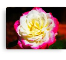 Multi-Coloured Rose Canvas Print
