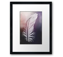 Feather in Pastel Tones Framed Print