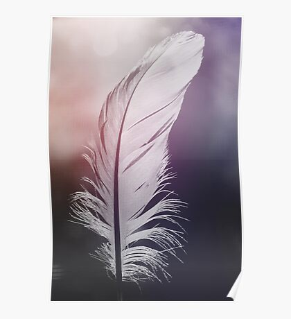 Feather in Pastel Tones Poster
