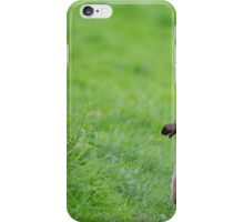 European Otter iPhone Case/Skin