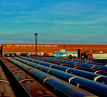 End of the Line (Color Panorama) by Gilda Axelrod