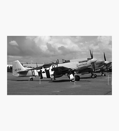 P-51D Mustang 'Ferocious Frankie' Photographic Print