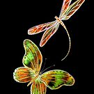 Butterfly and Dragonfly - Moonlight Flight by Linda Callaghan