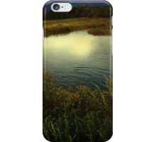 September Moon over Salt Marsh iPhone Case/Skin