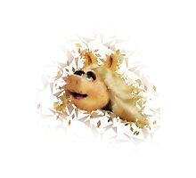 Miss Piggy Photographic Print
