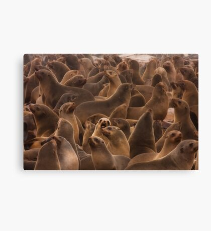 Surrounded by fur Canvas Print