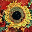 Solar Flair by Steve Walser