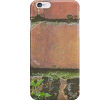 Autumn Bricks iPhone Case/Skin