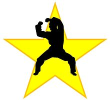 Martial Artist Silhouette Star by kwg2200