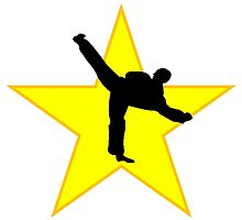 Karate Kick Silhouette Star by kwg2200