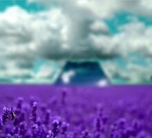 Utopia - Purple Landscape by Project-2