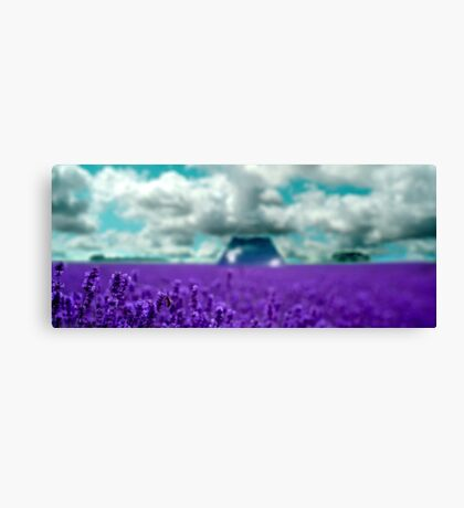 Utopia - Purple Landscape Canvas Print