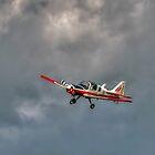 Scottish Aviation Bulldog by © Steve H Clark