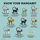 Know Your Mangabey by PepomintNarwhal