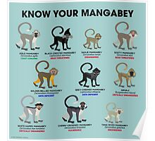 Know Your Mangabey Poster