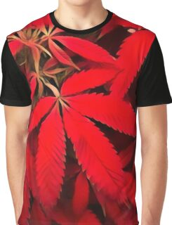 Red Dragon Graphic T-Shirt