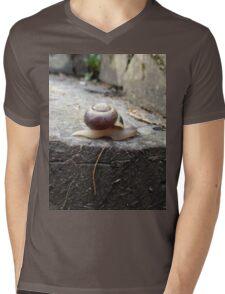 Snail Friend  Mens V-Neck T-Shirt