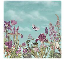 Mauve flowers on turquoise sky background Photographic Print