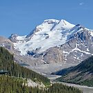 Jasper Sky Walk  by Judy Grant