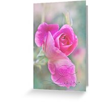 Romantic rose in a mist with love Greeting Card