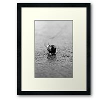 On the Fast Track to Nowhere Framed Print