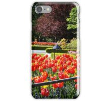 Spring Tulips - Floral Collection (2) iPhone Case/Skin