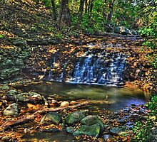 Waterfall, South Elgin Illinois by Roger Passman