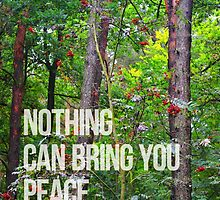 NOTHING CAN BRING YOU PEACE BUT YOURSELF by ak4e