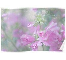 Odd Stemmed Wild Flower  Poster