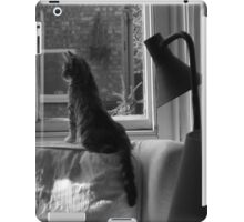 Cats. Watching & Waiting. It's what we do. iPad Case/Skin