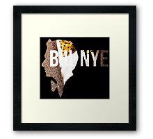 BILL NYE Framed Print