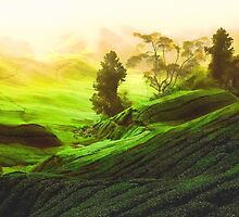 Rolling Hills of Green Tea by solnoirstudios