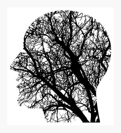 Human Nervous System As Tree Photographic Print