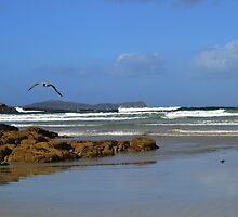 Anagry Beach, Co Donegal. 1 by oulgundog
