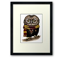 Owly Potter Framed Print
