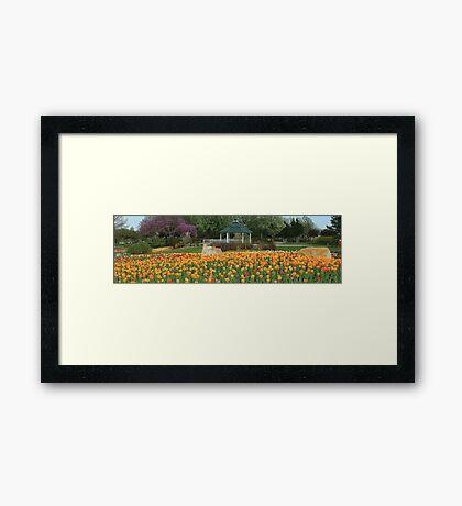 Floral Flowers Garden Framed Print