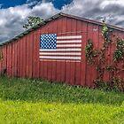 Barn Americana by Susan Nixon