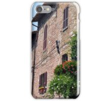 Stone buildings with plants in pots in Assisi, Italy iPhone Case/Skin