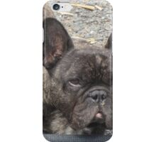 Should I Be Excited About This? iPhone Case/Skin