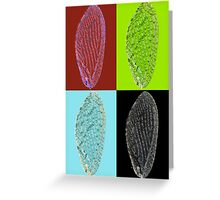 Brown lacewing wing pop art Greeting Card