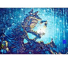 Mural Graffiti  Witchery  Photographic Print