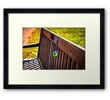 Baby Pacifier on Park Bench Framed Print