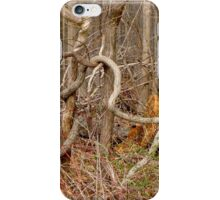 The Lure of the Thicket iPhone Case/Skin