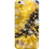Yellow Fall Tree Leaves Landscape Pine Tree iPhone Case/Skin