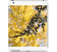 Yellow Fall Tree Leaves Landscape Pine Tree iPad Case/Skin