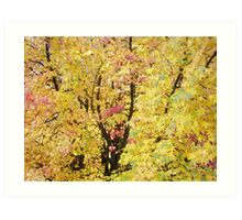 Autumn Forest Art prints Yellow Fall Leaves Art Print